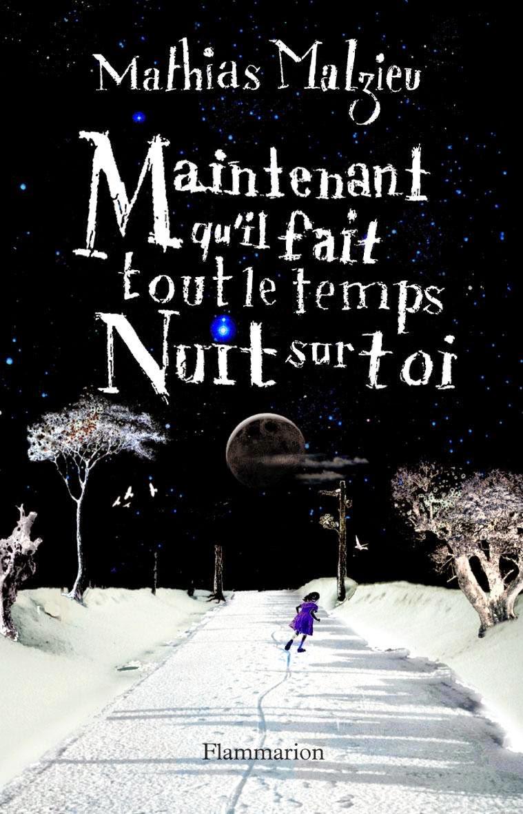 Book Review: Maintenant qu'il fait tout le temps nuit sur toi, by Mathias Malzieu